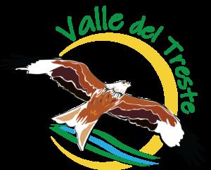 logo valle del treste