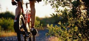 banner sentieri mountain bike